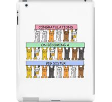 Congratulations on becoming a big sister. iPad Case/Skin