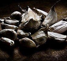 Alliumphobia: Fear of garlic (PHOTOBIA COLLECTION 2010)  by Carmel Morrissy