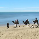 Camel Ride at Scarness Beach by Alison Murphy