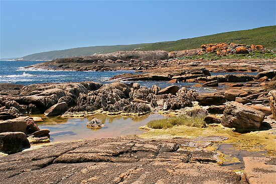 Cape Leeuwin, South Western Australia by Cindy Ritchie