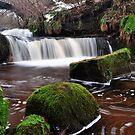 The Glen Waterfall,Kilsyth,Scotland 2 by Jim Wilson