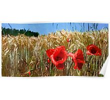 Poppies On The Field Poster