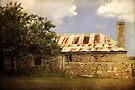 ~ This Old House ~ by Lynda Heins