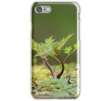 Miniatur Landscape iPhone Case/Skin
