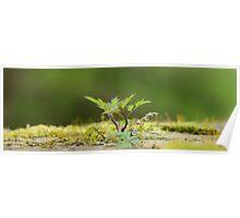 Miniatur Landscape Poster
