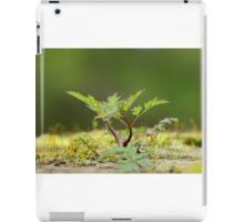Miniatur Landscape iPad Case/Skin