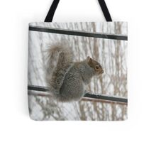 Brrrr!  I need a sweater! Tote Bag