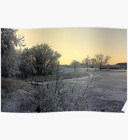 Town Lake - Frozen  Poster