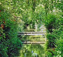 Along The River At Burton Bradstock  Village by lynn carter