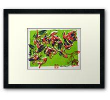 Summer Roses 5 Framed Print
