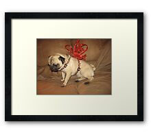 Pug with a Bow Framed Print