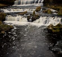 Willow River Falls III - WI by Daniel Rens