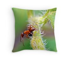 Red Ant Throw Pillow