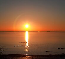 Sun Rise over the Baltic Sea by imagic