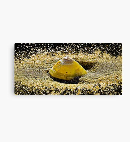 Inspired by nature-Bigton Sands Canvas Print