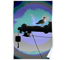 Bird on a Pipe Poster