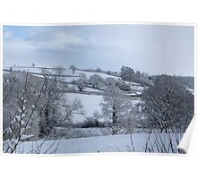Winter Devon landscape Poster