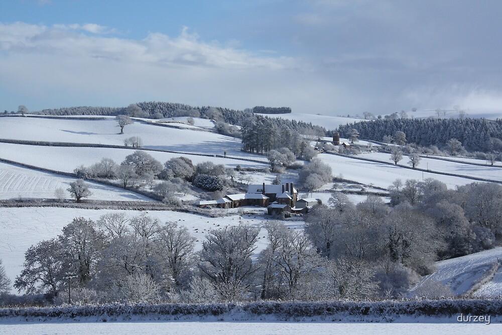 Wintry snowscape in Devon by durzey
