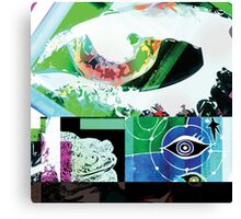 EYES AND FROG Canvas Print