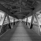 the bridge by lukasdf