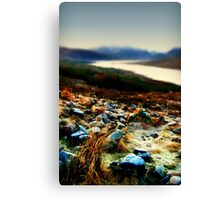Frozen Rocks and Grass in close up Canvas Print