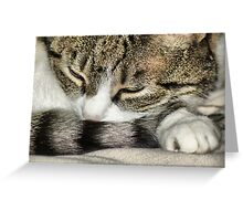 Wake Up Milly!! Greeting Card