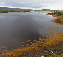 Loch Dunvegan - Scottish Highlands by Andrew McGuire