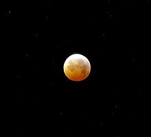 Winter Solstice Lunar Eclipse 2010 by ShotByAWolf