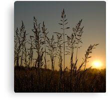 Silent sunrise Canvas Print