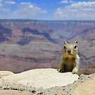 Welcome to the Grand Canyon by khuwe