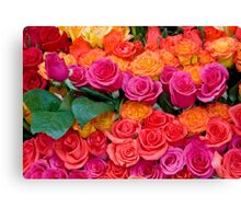 Colorful Roses Canvas Print