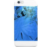 At the Quiet Lagoon iPhone Case/Skin