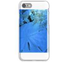 At the Quiet Lagoon iPhone Case/Skin