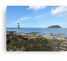 View Of Puffin Island Metal Print