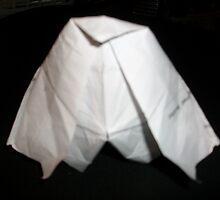 origami cobra 2/4 -(060111)- Praktica DPix 1000z 10MP by paulramnora