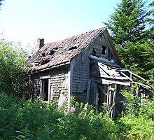 Abandoned by Martha Medford