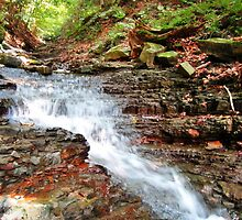 Mountain Stream by Redrose10