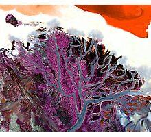 """Winter Estuary""  Photographic Print"