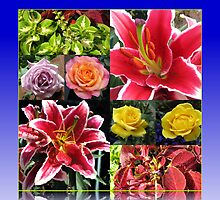 Lilies and Roses Summer Flowers Collage by BlueMoonRose