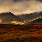 Scottish Highlands by John Bullen