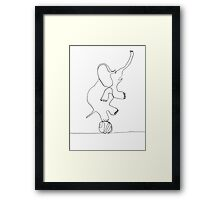 elephant on ball Framed Print