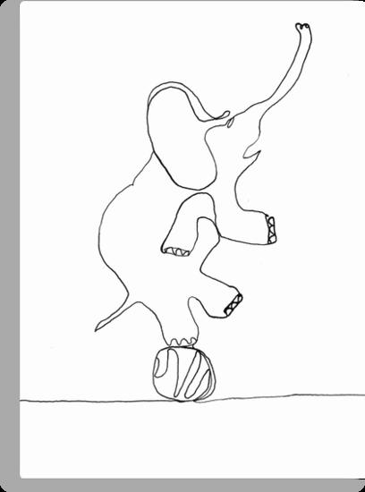 elephant on ball by dthaase