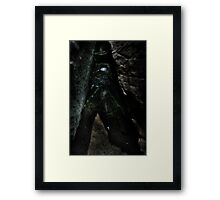 Silk Web  Framed Print