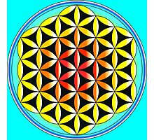 The Colourful Flower of Life Photographic Print
