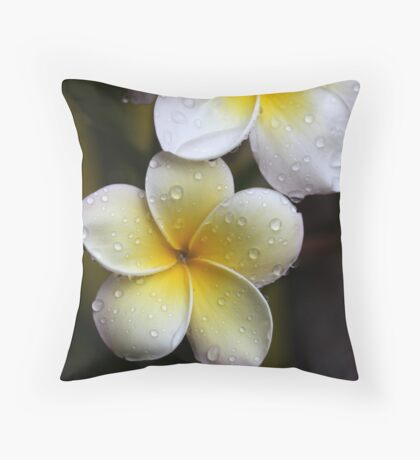 plenitude Throw Pillow