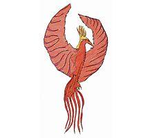 phoenix Photographic Print