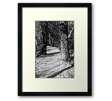 Early Snow on the Trail Framed Print