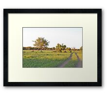 into the bush, madiwke, south africa Framed Print