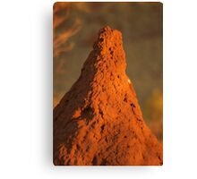 Termite mound Canvas Print