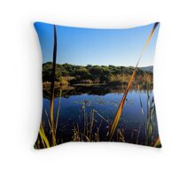 Apollo Bay - RIP Kodachrome Throw Pillow